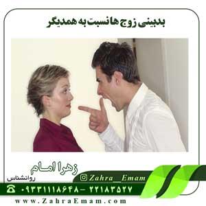 بدبینی زوج ها نسبت به همدیگر